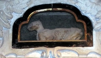 Petrarch's mummified cat